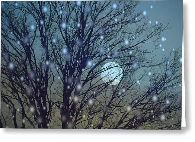 Winter Night Sky Greeting Card by Gothicolors Donna Snyder