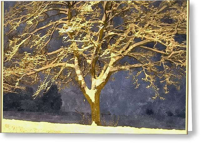 Winter Night - Snowy Tree Greeting Card by Jutta Wolfram