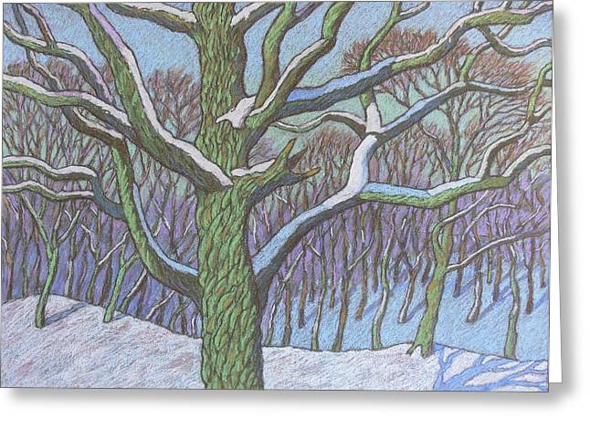 Winter Park Pastels Greeting Cards - Winter oak tree in the park Greeting Card by Igor Kir