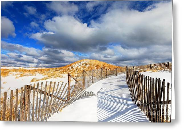 Marconi Beach Greeting Cards - Winter on Cape Cod  Greeting Card by Denis Tangney Jr