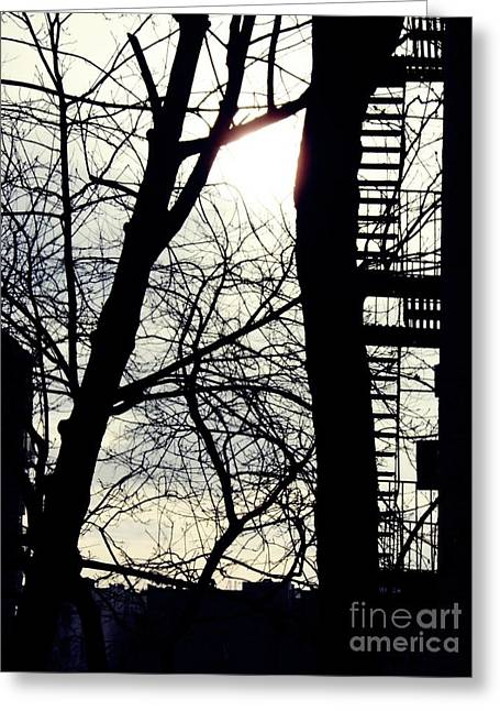 Washington Heights Greeting Cards - Winter on Overlook Terrace Greeting Card by Sarah Loft