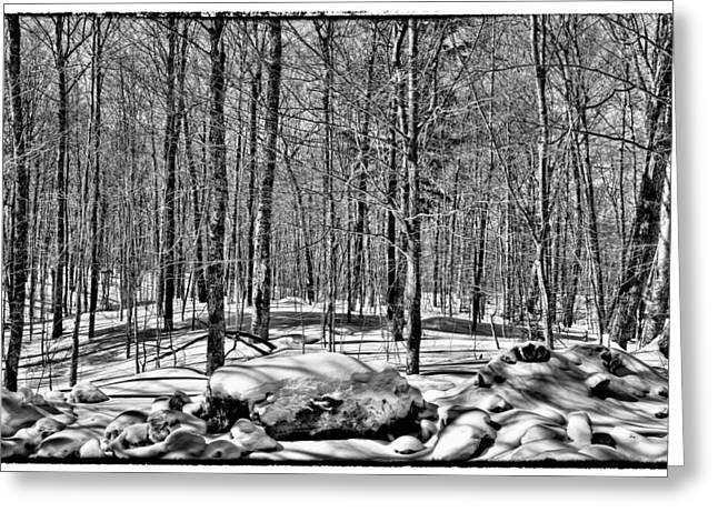 Snowy Field Greeting Cards - Winter on Rondaxe Road  Greeting Card by David Patterson
