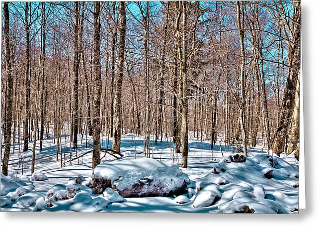 Evergreen Covered In Snow Greeting Cards - Winter on Rondaxe Road - Old Forge New York Greeting Card by David Patterson