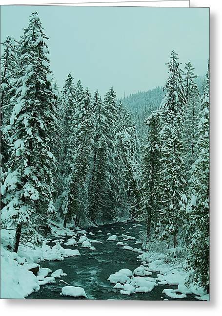 White River Scene Greeting Cards - Winter On The American River Greeting Card by Jeff  Swan