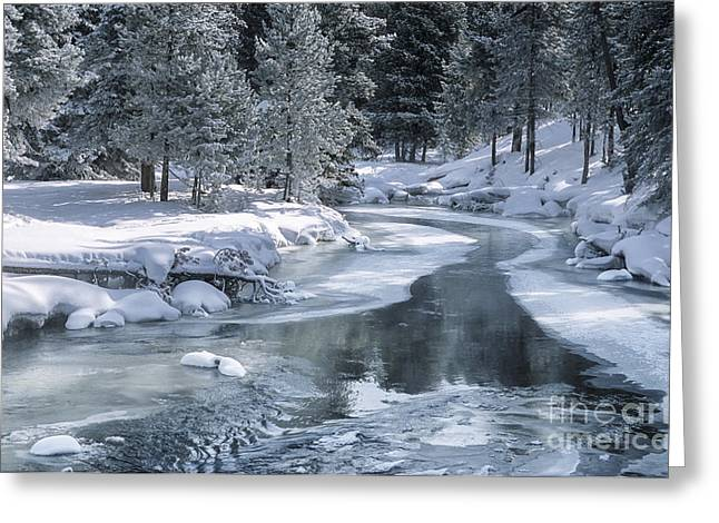 Snow-covered Landscape Greeting Cards - Winter on the Firehole River - Yellowstone National Park Greeting Card by Sandra Bronstein
