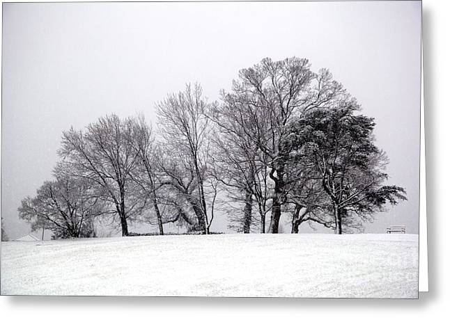 Charlottesville Greeting Cards - Winter on the Pantops Cville Greeting Card by Sean Cupp