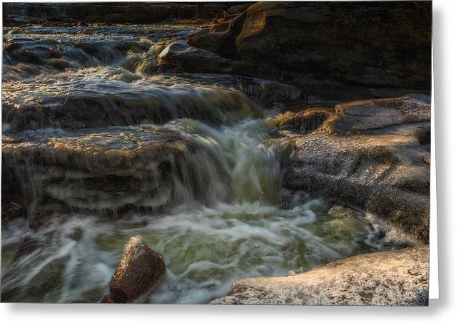 Metro Park Greeting Cards - Winter on the Rocky River 1 Greeting Card by Michael Demagall