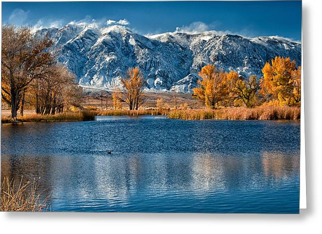 Eastern Sierra Greeting Cards - Winter or Fall Greeting Card by Cat Connor
