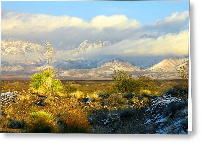 Las Cruces New Mexico Greeting Cards - Winter in the Organ Mountains Greeting Card by Jack Pumphrey