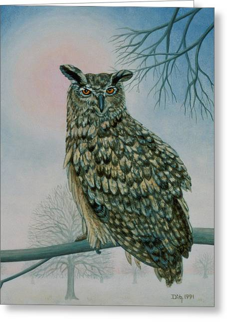 Signature Greeting Cards - Winter Owl Greeting Card by Ditz