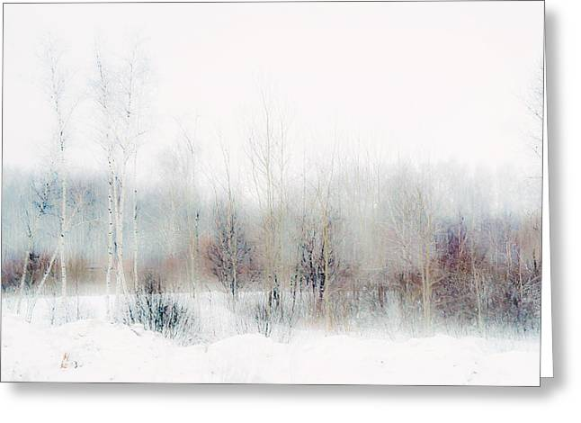 Fine Art Grisaille Greeting Cards - Winter Painting II. Aquarel by Nature Greeting Card by Jenny Rainbow