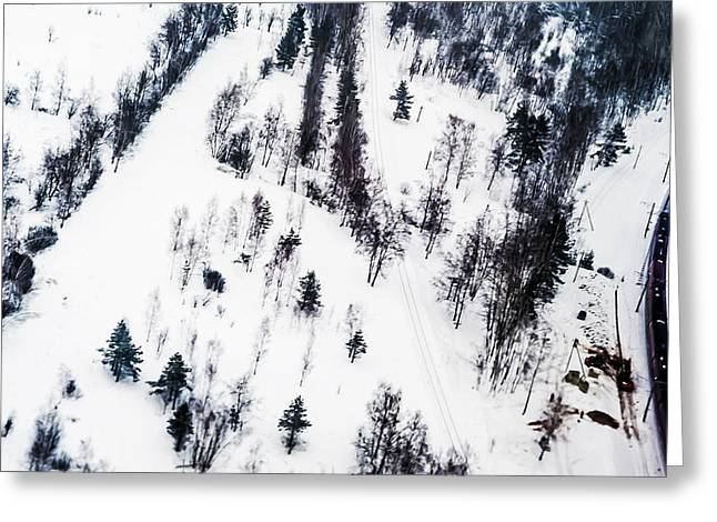 Ink Drawing Photographs Greeting Cards - Winter Painting II. Ink Drawing by Nature Greeting Card by Jenny Rainbow