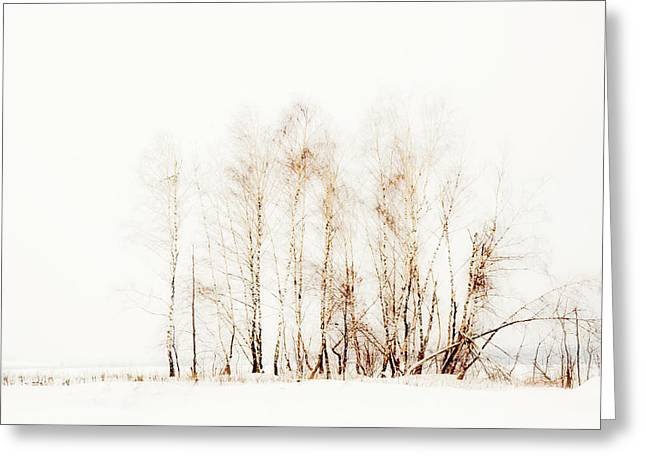 Unique View Greeting Cards - Winter Painting VI. Aquarel by Nature Greeting Card by Jenny Rainbow