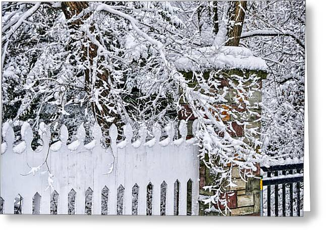 Winter park fence Greeting Card by Elena Elisseeva