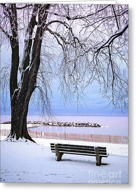 Park Benches Photographs Greeting Cards - Winter park in Toronto Greeting Card by Elena Elisseeva