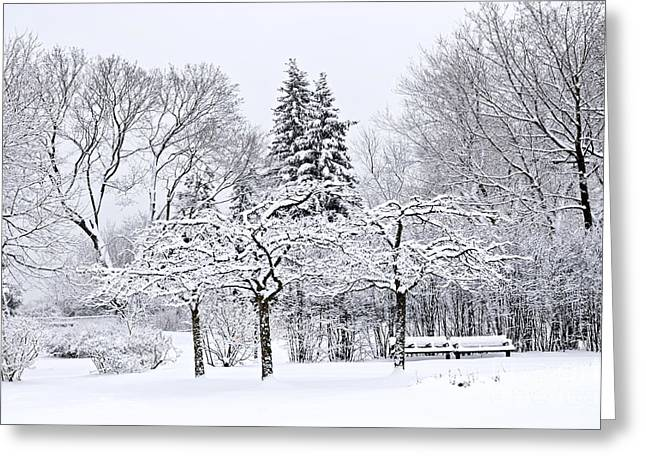 Winter Park Greeting Cards - Winter park landscape Greeting Card by Elena Elisseeva