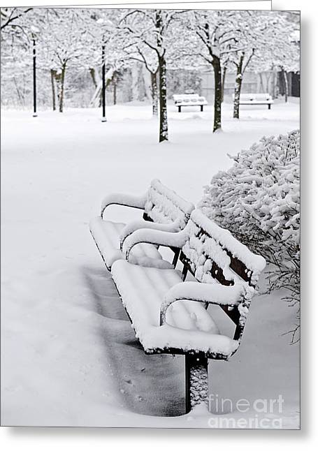 Snowy Tree Greeting Cards - Winter park with benches Greeting Card by Elena Elisseeva