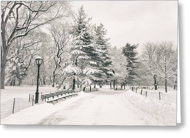 Nyc Winter Greeting Cards - Winter Path - Snow Covered Trees in Central Park Greeting Card by Vivienne Gucwa