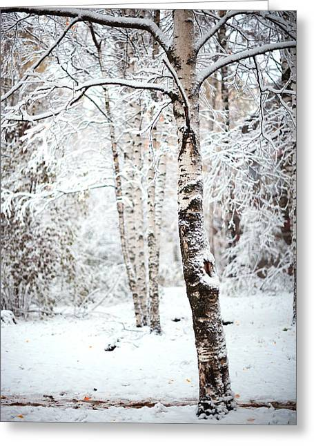 Russian Nature Greeting Cards - Winter Poetry Greeting Card by Jenny Rainbow