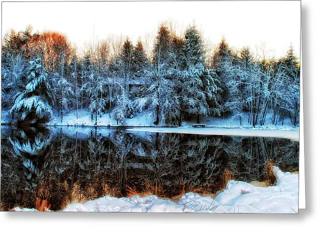 Fed Greeting Cards - Winter Pond at Shady Grove Greeting Card by Judy Duncan