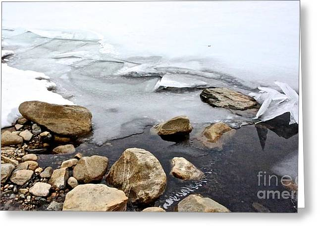 Randi Shenkman Greeting Cards - Winter Quabbin Greeting Card by Randi Shenkman
