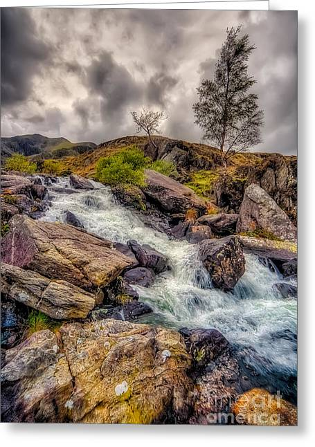 Winter Landscape Digital Greeting Cards - Winter Rapids Greeting Card by Adrian Evans