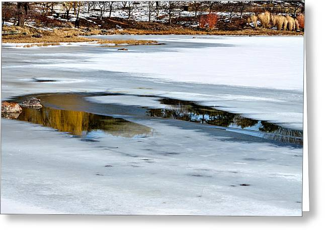 Reflections On Snow Greeting Cards - Winter Reflection Greeting Card by Julie Palencia