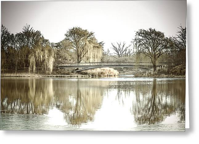 Reflection In Water Digital Greeting Cards - Winter Reflection Landscape Greeting Card by Julie Palencia