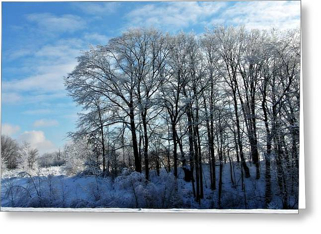 Winter Reflections Greeting Card by Dawdy Imagery
