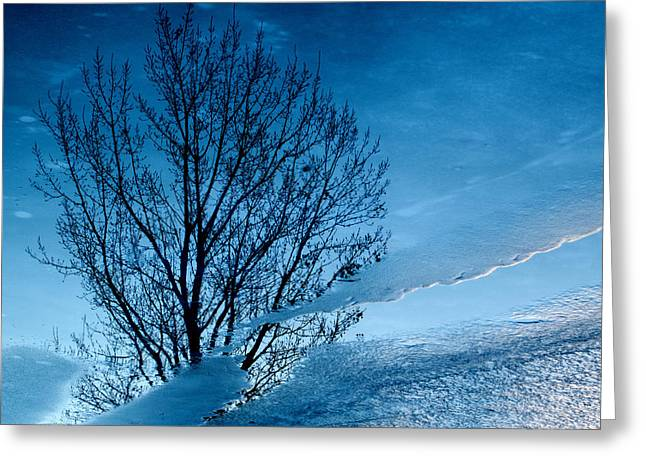 Chilling Greeting Cards - Winter Reflections Greeting Card by Don Spenner