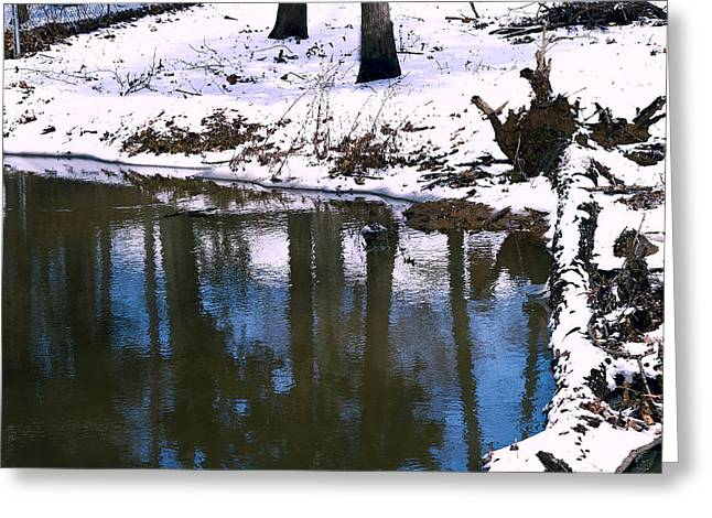 Snow-covered Landscape Digital Art Greeting Cards - Winter Reflections - Lakeside Winter Landscape Greeting Card by Barry Jones