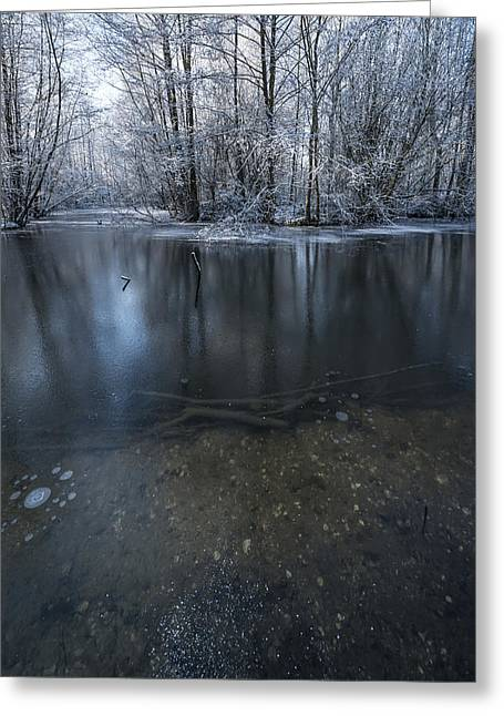 Snowy Stream Greeting Cards - Winter Reflections Greeting Card by Svetlana Sewell