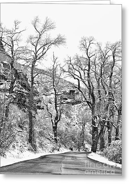 Snow Tree Prints Greeting Cards - Winter Road Black and White Greeting Card by James BO  Insogna