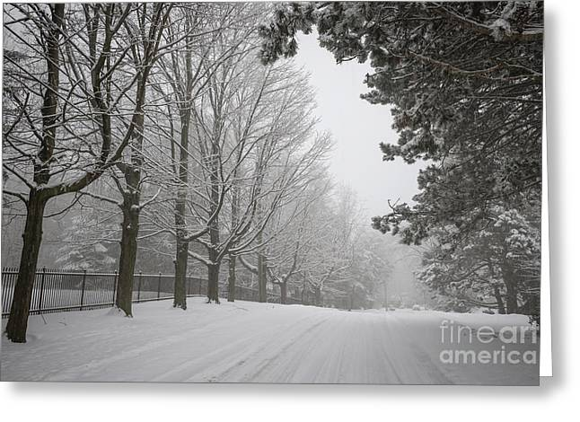 Driving Greeting Cards - Winter road Greeting Card by Elena Elisseeva