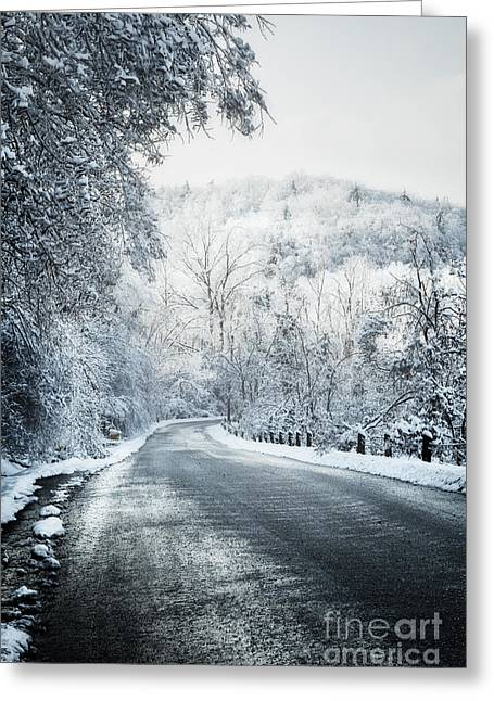Wintry Greeting Cards - Winter road in forest Greeting Card by Elena Elisseeva