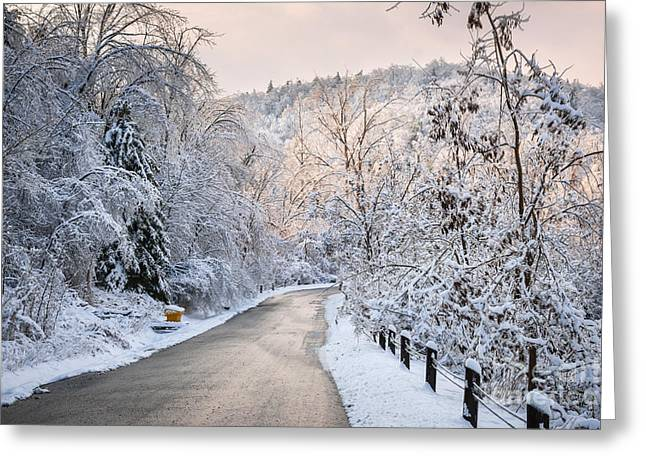 Pink Road Greeting Cards - Winter road in snowy forest Greeting Card by Elena Elisseeva