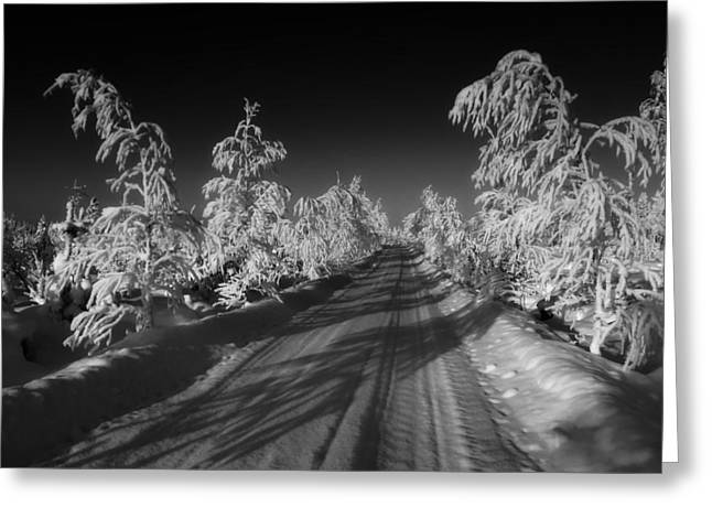 Wintry Greeting Cards - Winter Road Greeting Card by Mountain Dreams