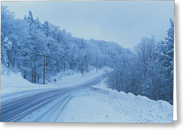 Gray Sky Greeting Cards - Winter Road Nh Usa Greeting Card by Panoramic Images