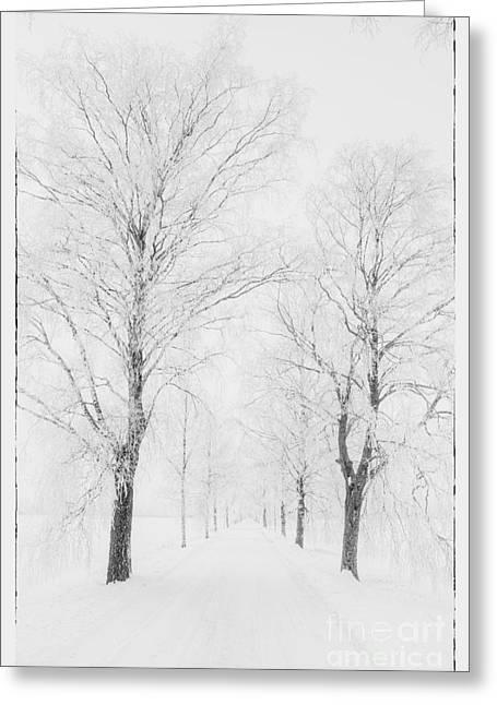 Harmonious Greeting Cards - Winter road Greeting Card by Veikko Suikkanen