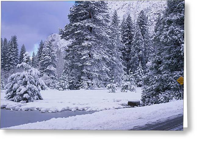 Roadway Greeting Cards - Winter Road, Yosemite Park, California Greeting Card by Panoramic Images