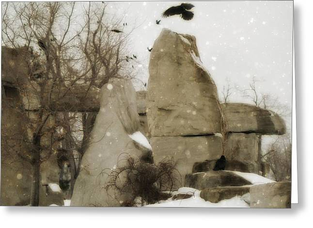 Winter Crows Greeting Cards - Winter Rocks Greeting Card by Gothicolors Donna Snyder
