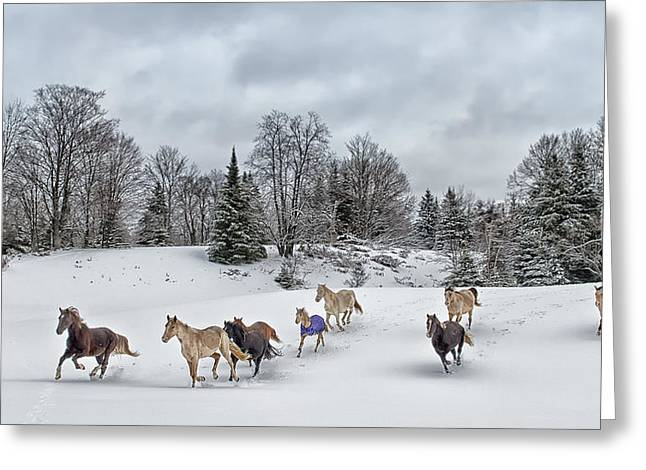 """storm Prints"" Greeting Cards - Winter Run Greeting Card by Peter Lindsay"