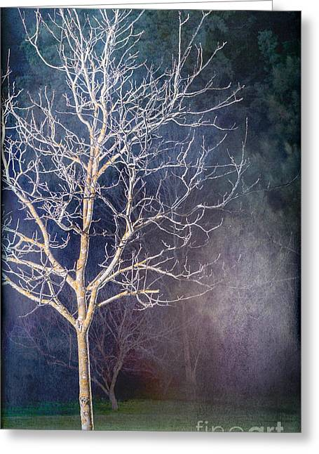Russ Brown Greeting Cards - Winter Greeting Card by Russ Brown