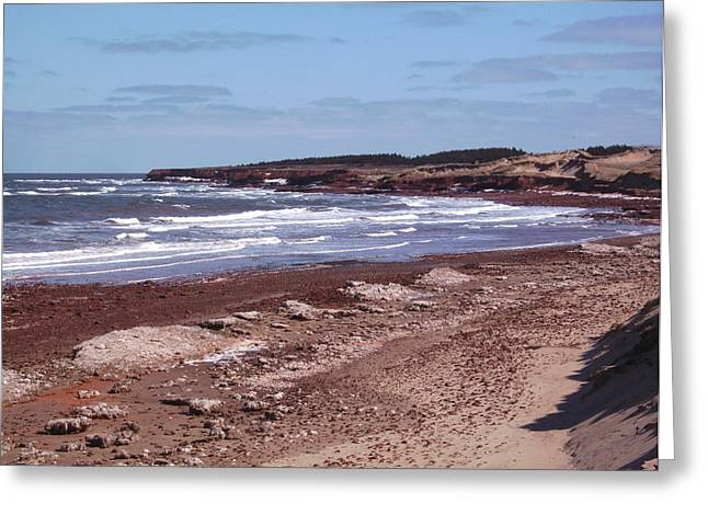 Seren Greeting Cards - Winter Sands Greeting Card by Peter Richards