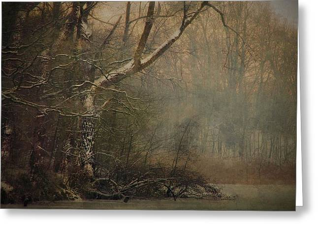 Autumn In The Netherlands Greeting Cards - Winter scene at forest pond Greeting Card by Hugo Bussen