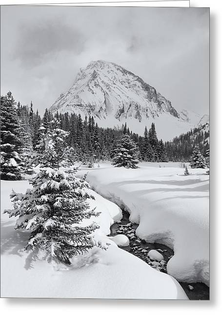 Candian Greeting Cards - Winter Scene Canadian Rockies Greeting Card by Yves Gagnon