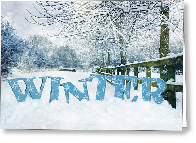 Imprint Greeting Cards - Winter Scene Greeting Card by Amanda And Christopher Elwell