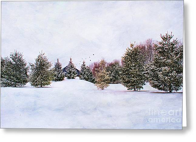 Snowstorm Greeting Cards - Winter Scene Greeting Card by Darren Fisher