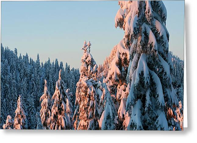 Winter Scenery Greeting Card by Pierre Leclerc Photography