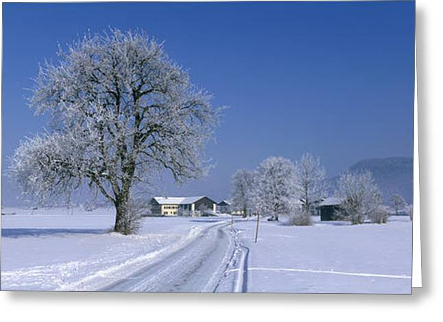 Roadway Greeting Cards - Winter Scenic, Austria Greeting Card by Panoramic Images